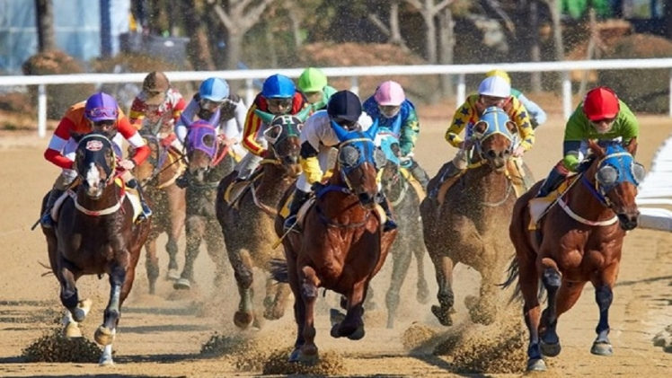 Photo of Handicapping In Horse Racing: What It Is And When Should You Take Advantage?