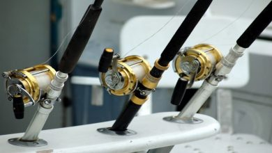 Photo of 4 Popular Types of Fishing Reels That You Should Know