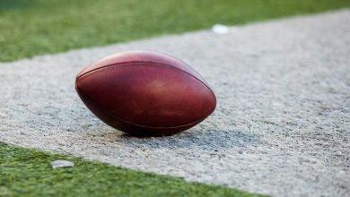 Photo of Michigander's Favorite Sports